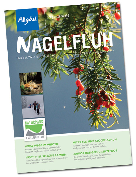winter2015-nagelfluhcover